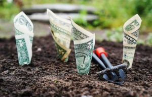 Featured Image for Post Money Manifestation through Law of Attraction