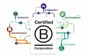 Business Owner Structure - B-Corporation